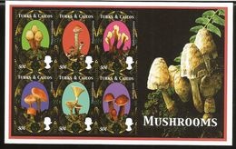 J) 2000 TURKS AND CAICO ISLANDS, MUSHROOMS, FUNGI OF DIFFERENT SPECIES, SOUVENIR SHEET, MNH - Europe (Other)