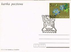 Sonderstempel Opole, Oppeln 1984 Schmetterling, Museum - Butterfly - 1944-.... Republik