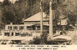 CPA-PUB-1955-USA-ARIZONA-MONT LEMMON LODGE-TBE - Tucson