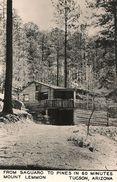 CPA-PUB-1955-USA-ARIZONA-MONT LEMMON -PINES CHALET Et RIVIERE-TBE - Tucson