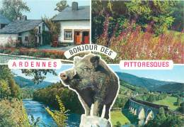 CPM - Bonjour Des Ardennes Pittoresques - Belgique