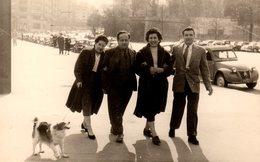Photo Originale Marcheurs De Rues, Famille Et Leur Chien Sur Un Large Trottoir Et Citroën 2 Cv, Renault 4 CV, ..., 1956 - Personnes Anonymes