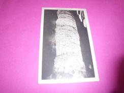 CARLSBAD CAVERNS ...GIANT COLUMN...BIG ROOM - Etats-Unis