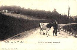 Vallée De La Vesdre - Route De Colonheid à Nessonvaux (animée, Vache, 1905) - Trooz