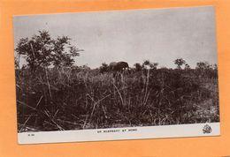 Sudan 1910 Postcard - Sudan