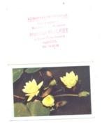 Petit Calendrier 1962 - Alimentation Générale Maison HUCHET à NANTES, Nénuphar (Fr55) - Calendriers