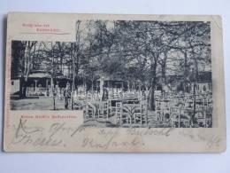 AUSTRIA OESTERREICH WIEN Anton Riedl´s Restauration Gruss Aus Knödelhütte AK Old Postcard - Wien Mitte
