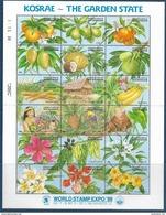 1989 MICRONESIE 113-30** Fruits, Fleurs - Micronésie