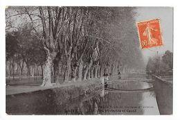 BRIVE  (cpsm 19)  Allée Des Platanes Et Canal -   - L 1 - Brive La Gaillarde