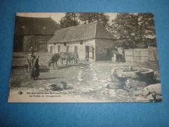 87 Saint-Germain-les-belles-filles Le Ferme De Gourgouderie Animée Fermière Vaches Porc Abreuvoir - Saint Germain Les Belles
