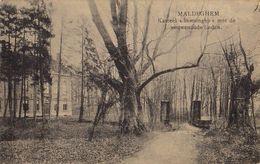 Maldegem Kasteel Boesinghe Met De Eeuwenoude Linden - Maldegem