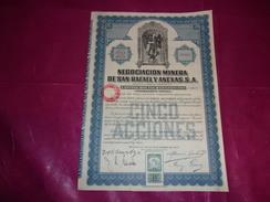NEGOCIATION MINERA DE SAN RAFAEL Y ANEXAS (titre De 5 Actions) Mexico,mexique - Shareholdings