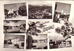 SEQUALS-UDINE-SALUTI MULTIVEDUTE(7 IMMAGINI)CARTOLINA VERA FOTOGRAFIA -VIAGGIATA IL 12-2-1960 - Udine