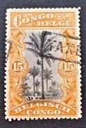 COCOTIERS 1894/00 - OBLITERE - YT 20 - OBLITERATION TAMPON MANUEL TAXE - Belgisch-Kongo