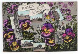 Néchin : Pensées De NECHIN 1910 - Estaimpuis