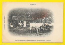 Chasseurs Annamites Au Cantonnement (Moreau) Tonkin Viet-Nam - Viêt-Nam