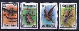 Montserrat Set Of Stamps To Celebrate Bats Overprinted With The Word Specimen 1988. - Montserrat