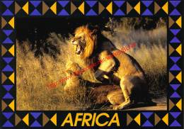 Mating Lions - Zimbabwe - Lions