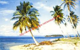 San Blad Island - Panama - Panama