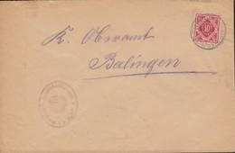 INFLA Württemberg Dienstpost 115 EF Auf Brief  Mit Stempel: Rosenfeld 4.NOV.1919 - Wurttemberg