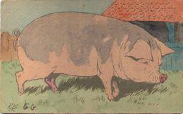 Raphael TUCK - Painting Book - Cochon - Tuck, Raphael