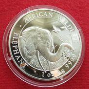 Somalia 100 Shilling 2018 Elephant - Somalie