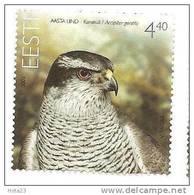 Estonia Estland - Goshawk Bird Stamp 2008  Stamp MNH - Estland