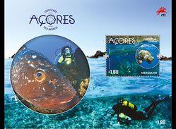 Açores Portugal 606/09 Et F610/11 Faune Et Flore, Volcan, Plongée Sous-marine, Poisson, Baleine, Tortue - Umweltschutz Und Klima
