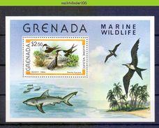 Mwe2546 FAUNA VOGELS STERN HAAI TERN SHARK HAIE BIRDS VÖGEL AVES OISEAUX GRENADA 1979 PF/MNH - Albatros & Stormvogels