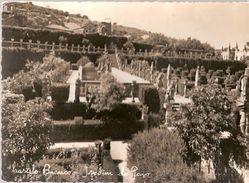 Portugal & Circulated, Garden Of The Palace, Castelo Branco, Vilar De Mouro 1963 (6866) - Buildings & Architecture