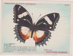 R : Vieux  Papier : Biscottes  Clement : Papillon : - Old Paper