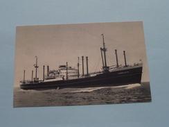 "M.V. "" SOMMELSDYK "" - HOLLAND / AMERICA LINE ( Zie Foto's Voor Detail ) ! - Cargos"