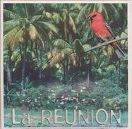 974 - ILE DE LA REUNION  - LES  ENVIRONS DE SAINT PAUL  - OISEAU LE CARDINAL - Autres