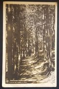 Kyustendil Kyoustendil Kjustendil - Bulgaria - Allee Im Park - Trees Wood Nv 1940 - Bulgaria