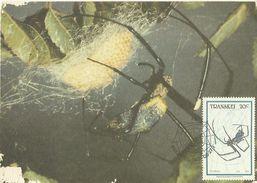Transkei 1987 Insect 20c Spider Maximum Card - Transkei