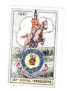 Vignette Militaire Delandre - Royaume-uni - 1st Royal Dragoons - Erinnofilia