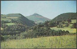 Glen Of The Downs, Wicklow, Ireland, C.1960 - Avon Sales Postcard - Wicklow