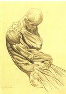 Jacques Gamelin (1738-1803) - Musée Des Beaux-arts De Carcassonne - 2017 - Ostéologie, Myologie, Médecine - Engravings