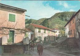 Entroterra Di Genova_DONETTA (Trattoria Antola)-Viaggiata-Francobollo Integro-Originale100%- - Genova