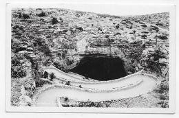 (RECTO / VERSO) CARLSBAD - THE  CAVERN - PETIT PLI ANGLE BAS A GAUCHE - CARTE PHOTO - CPA NON VOYAGEE - Etats-Unis