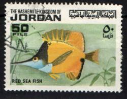 GIORDANIA - 1974 - RED SEA FISH - USATO - Giordania