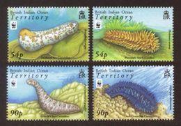 B.I.O.T. 2008 - Faune Marine, Concombres De Mer, Wwf - 4 Val Neufs // Mnh CV €13.50 - Territoire Britannique De L'Océan Indien