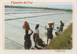 (PT408) FIGUEIRA DA FOZ. TRANSPORTANDO LA SAL  ... UNUSED - Coimbra
