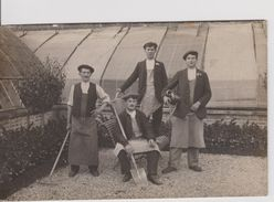Photo Originale : Jardiniers : Arrosoir, Pelle, Rateau, Serres - Anonymous Persons