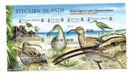 2005 Pitcairn Curlew Birds Souvenir Sheet  MNH - Stamps