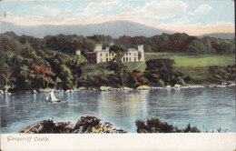 Ireland PPC Glengarriff Castle No. 120-65 American News Company Lithochrome (2 Scans) - Cork