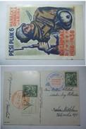 CZECHOSLOVAKIA - 1938 Propagandacard - Bachmac Brezen - Mit Olomouc Autoposta Sonderstempel - Covers & Documents