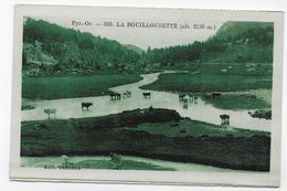 (RECTO / VERSO) LA BOUILLOUSETTE - N° 323 - VACHES - CPA NON VOYAGEE - Autres Communes