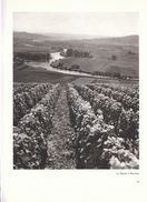 1950 - Héliogravure De Roger Schall - Epernay (Marne) - La Marne - FRANCO DE PORT - Vieux Papiers
