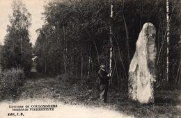 ENVIRONS DE COULOMMIERS -77- MENHIR DE PIERREFITTE - Coulommiers